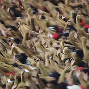 Flamengo fans support their team during the Flamengo v Vasco da Gama, Futebol Brasileirao 2010 League match at the Jornalista Mário Filho, Maracana Stadium, Rio de Janeiro,  Brazil. 1st August 2010. Photo Tim Clayton.