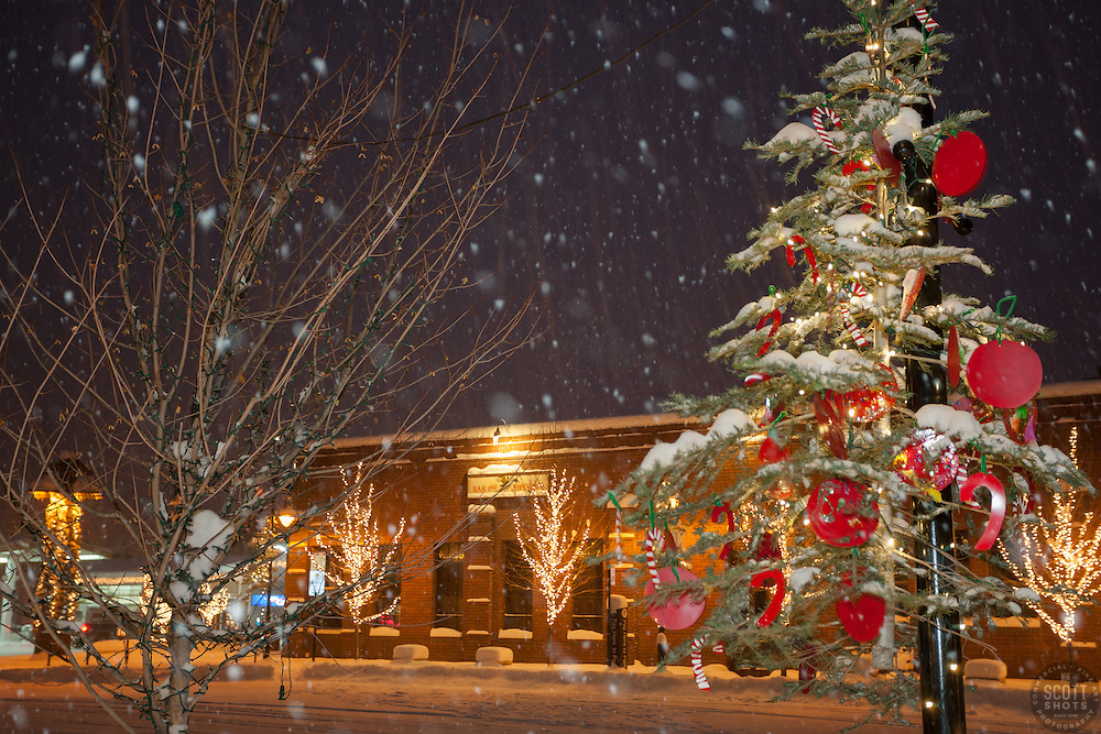 """""""Snowy Christmas Tree in Truckee 7"""" - Photograph of a snowy Christmas tree in Downtown Truckee, California. Photographed during a snow storm in the early morning."""