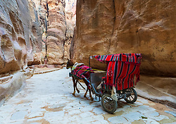 A horse carriage with tourists in the Siq the canyon leading to the main entrance to the ancient Nabatean city of Petra, Jordan.