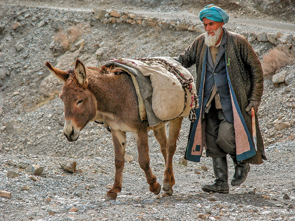 """Portrait of an old Tajik man winding his way from the fields to his village with his """"beast of burden"""""""