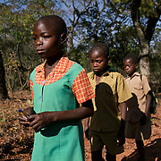 Letwin, 13, walks home from school with school mates in Masvingo Province, Zimbabwe. She is born HIV positive and is the sister of Liliosa. <br /> <br /> Drought in southern Africa is devastating communities in Zimbabwe, leaving 4 million people urgently in need of food aid. The government declared a state of emergency,. <br /> <br /> Here in Masvingo Province, the country's hardest hit province, vegetation has wilted, livestock is dying, and people are at serious risk of famine. <br /> <br /> Pictures shot by Justin Jin