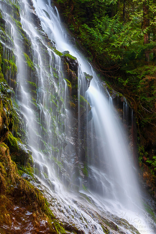 Feature Show Falls divides into several strands as it drops about 180 feet (55 meters) into the Boulder River in the Boulder River Wilderness in Washington state.