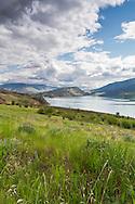 A field in Kekuli Bay Provincial Park on Kalamalka Lake near Vernon, British Columbia, Canada