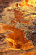 A water pocket on the canyon floor reflects the surrounding cliffs bathed in golden light at Crack Canyon of the San Rafael Reef, Utah.