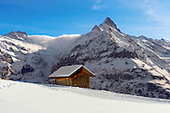 Mountain chalet in winter looking towards the wetterhorn mountain. Grindelwald, Swiss Alps .<br /> <br /> Visit our SWITZERLAND  & ALPS PHOTO COLLECTIONS for more  photos  to browse of  download or buy as prints https://funkystock.photoshelter.com/gallery-collection/Pictures-Images-of-Switzerland-Photos-of-Swiss-Alps-Landmark-Sites/C0000DPgRJMSrQ3U