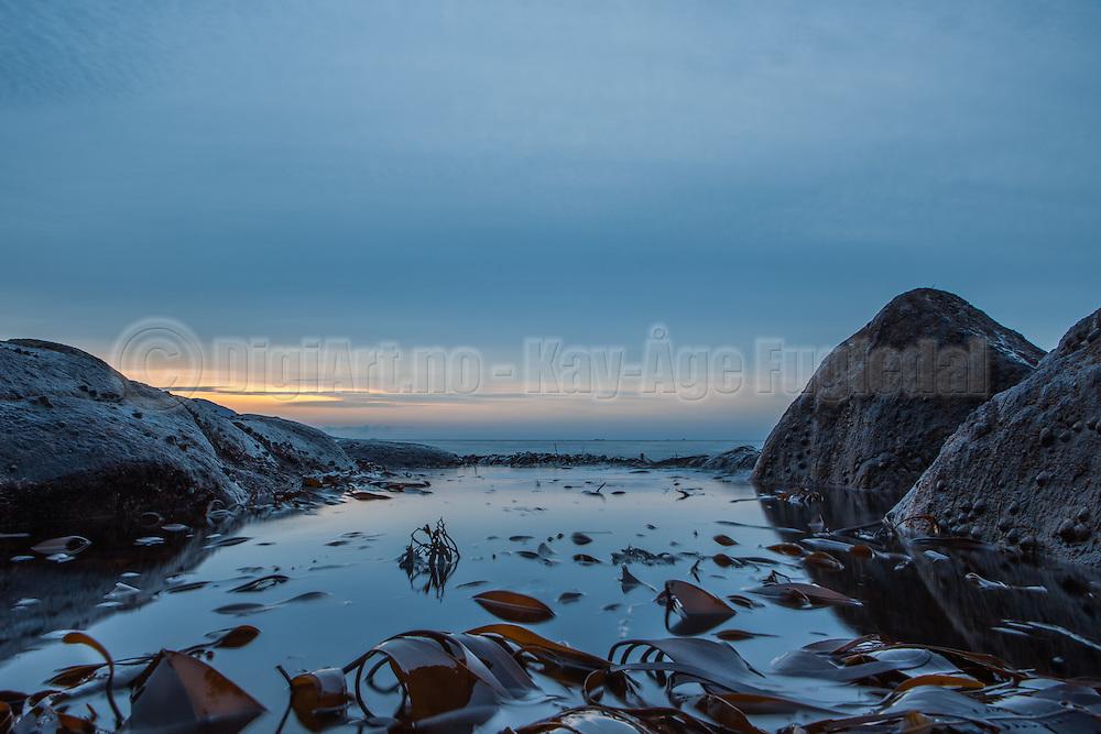 Kveldsstemning i fjæra   evening mood on the shoreline