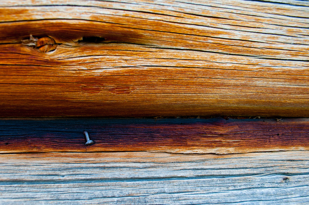 Detail of the caulking between the cracks of the log walls of the T.A. Moulton Barn in Grand Teton National Park, Wyoming.
