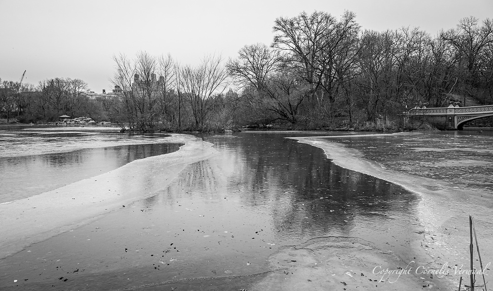 Very cold weather in Central Park today Jan. 31, 2021 with a major blizzard coming our way.
