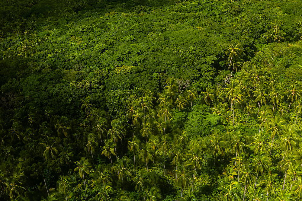 Aerial view, Ouvea island, Loyalty Islands, New Caledonia