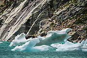Icebergs from the Jumbo Glacier melt in Lake of the Hanging Glacier in the Purcell Range of the Columbia Mountains, British Columbia, Canada.