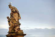 """SHOT 11/21/08 8:08:07 AM - A seagull atop one of the many statues that line the Charles Bridge in Prague, Czech Republic. Doing so is said to bring good luck. The alley of 30 mostly baroque statues and statuaries situated on the balustrade forms a unique connection of artistic styles with the underlying gothic bridge. Most sculptures were erected between 1683 and 1714. They depict various saints and patron saints venerated at that time. The most prominent Bohemian sculptors of the time took part in decorating the bridge, such as: Matthias Braun, Jan Brokoff and his sons Michael Joseph and Ferdinand Maxmilian. Prague is the capital and largest city of the Czech Republic. Its official name is Hlavní m?sto Praha, meaning Prague, the Capital City. Situated on the River Vltava in central Bohemia, Prague has been the political, cultural, and economic centre of the Czech state for over 1100 years. The city proper is home to more than 1.2 million people, while its metropolitan area is estimated to have a population of over 1.9 million. Since 1992, the extensive historic centre of Prague has been included in the UNESCO list of World Heritage Sites. According to Guinness World Records, Prague Castle is the largest ancient castle in the world. Nicknames for Prague have included """"the mother of cities"""", """"city of a hundred spires"""" and """"the golden city"""". Since the fall of the Iron Curtain, Prague has become one of Europe's (and the world's) most popular tourist destinations. It is the sixth most-visited European city after London, Paris, Rome, Madrid and Berlin. Prague suffered considerably less damage during World War II than some other major cities in the region, allowing most of its historic architecture to stay true to form. It contains one of the world's most pristine and varied collections of architecture, from Art Nouveau to Baroque, Renaissance, Cubist, Gothic, Neo-Classical and ultra-modern..(Photo by Marc Piscotty / © 2008)"""