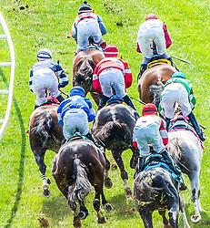 Louisville KY Horse Race