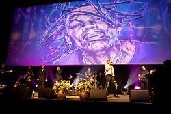 Show, Greg Bannis<br /> Equigala - Dockx Dome - Brussel 2019<br /> © Hippo Foto - Dirk Caremans<br /> 23/01/2019