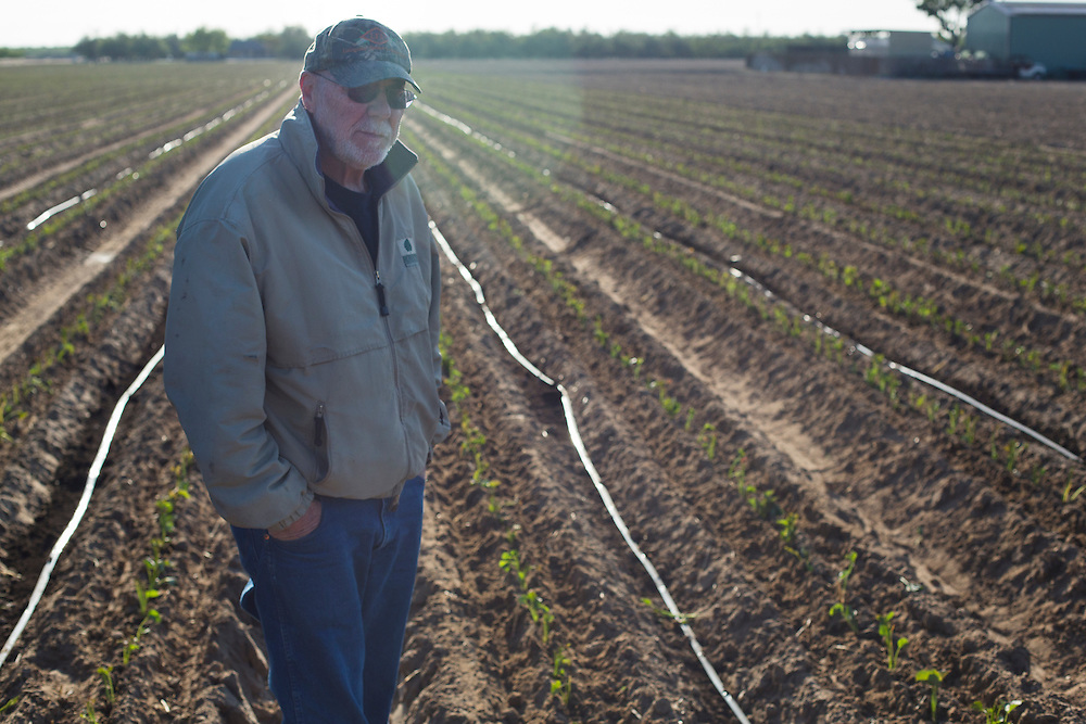 Robert Weimer is farmer in Merced County near Atwater, CA.  He primarily grows almonds, sweetpotatoes and peaches.  Bob, as he is generally known, has made significant investments in water efficiency over the years, and applies scientific rigor throughout his operation.   The sole source for above-ground water in his area is Lake McClure, which is perilously low. Historically,the region has primarily relied on groundwater.  Now that is more the case then ever.