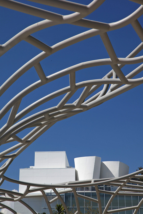 New World Center, Miami Beach by Frank Gehry with park designed by West 8