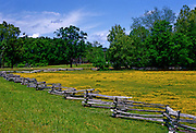 Split rail fence and spring flowers on Natchez Trace near French Camp, Mississippi.
