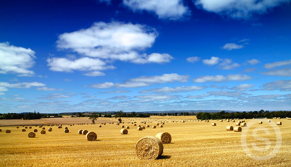 Photographer: Chris Hill, Hay Bales, County Carlow