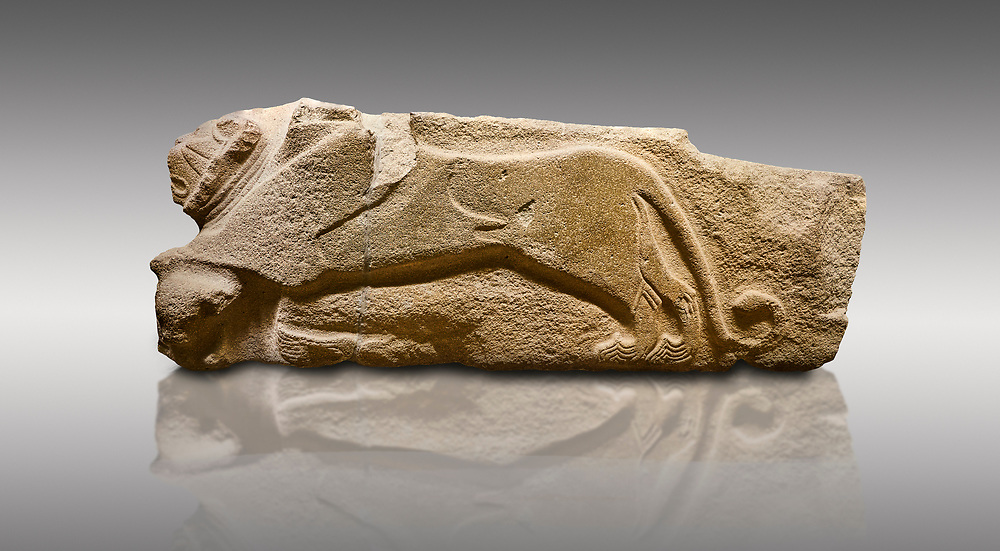 Alaca Hoyuk - Hittite lion sculptures corner Stone. . Andesite. Alacahoyuk, 1399 - 1301 B.C. Anatolian Civilisations Museum, Ankara, Turkey.<br /> <br /> Corner stone decorated by lion, bull and winged sun disk. It was discovered at the right side of the Alacahoyuk sphinx door. The lion puts his front legs on a small bull. There is a Hittite winged sun disk on the abdomen of the lion, which can be seen from a lower location. The position of the sun course indicates that the stone is situated in a high place. <br /> <br /> Against a brown gray background. .<br />  <br /> If you prefer to buy from our ALAMY STOCK LIBRARY page at https://www.alamy.com/portfolio/paul-williams-funkystock/hittite-art-antiquities.html . Type - Aalca Hoyuk - in LOWER SEARCH WITHIN GALLERY box. Refine search by adding background colour, place, museum etc.<br /> <br /> Visit our HITTITE PHOTO COLLECTIONS for more photos to download or buy as wall art prints https://funkystock.photoshelter.com/gallery-collection/The-Hittites-Art-Artefacts-Antiquities-Historic-Sites-Pictures-Images-of/C0000NUBSMhSc3Oo