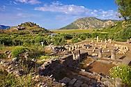 The 1st cent B.C Terrace Temple dedicated to Zeus Soteros  and round sanctuary dating back to the 5th cent B.C and dedicated to the god King Basileus Kaunios, the son of Apollo's son Miletos and the water nymph Kyanee, . In the background is the silted up harbour.  Archaeological site of  Kaunos (Caunos), Dalyan Turkey<br /> <br /> If you prefer to buy from our ALAMY PHOTO LIBRARY  Collection visit : https://www.alamy.com/portfolio/paul-williams-funkystock/dalyan-lycian-tombs-and-kaunos.html<br /> <br /> Visit our TURKEY PHOTO COLLECTIONS for more photos to download or buy as wall art prints https://funkystock.photoshelter.com/gallery-collection/3f-Pictures-of-Turkey-Turkey-Photos-Images-Fotos/C0000U.hJWkZxAbg