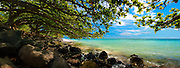 Trees overhang the ocean at Punaluu on Oahu's windward coast.