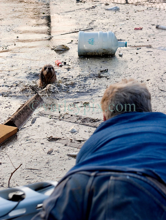 05 Sept  2005. New Orleans, Louisiana. Post hurricane Katrina.<br /> Animal rescue boat. William Jones hauls a dog from the water in Uptown New Orleans as he sweeps the area with friends looking for people or animals to rescue.<br /> Photo; ©Charlie Varley/varleypix.com