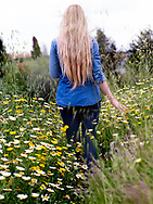Rear view of a young woman with long blond hair and casual clothes walking among wildflowers