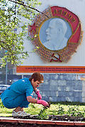 Perm, Russia, 01/06/2006..A city gardener at work with a huge Order Of Lenin symbol, erected in 1971, behind.