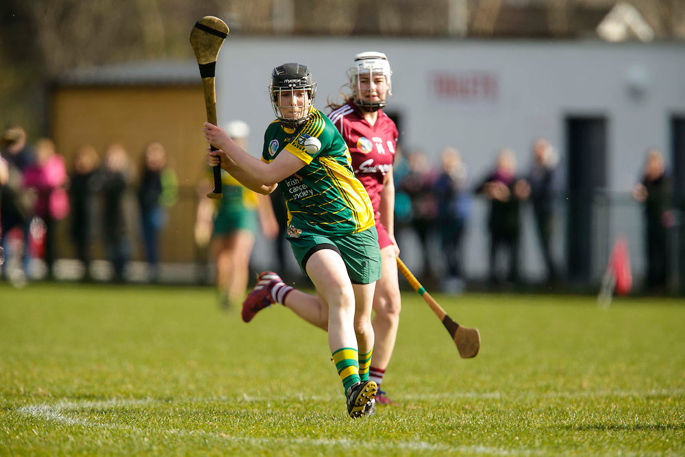 National Camogie League Division 2 at Trim, 20th March 2016<br /> Meath vs Galway<br /> Sinead Hackett (Meath) & Marie Brehony (Galway)<br /> Photo: David Mullen /www.cyberimages.net / 2016