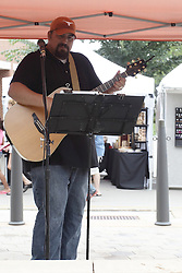 11 July 2015:  A soloist entertains the wanderers on the roundabout during the 2015 Sugar Creek Arts Festival in Uptown Normal Illinois