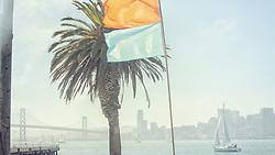 The Treasure Island Music Festival - San Francisco, CA - 10/14/12