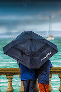 """Raining on my parade is a play on words, as this is shot on """"Cowes Parade"""", the main esplanade within the town. It was just a chance shot as it started to pour with rain. A minute later and they had gone..."""