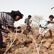 The stone wall project is to prevent precious top soil to be washed away when the rain does come and AISDA employ locals to build walls running across the hill side.  Action for Integrated Sustainable Development Association (AISDA) work in the AFAR region of Eastern Ethiopia, based in Delafagi. The Afars practise an old tradition of Female Genital Mutilation where the baby girls has her clitoris and labia cut away and her vagina sewn up. The day before her wedding day the girl is un-stiched ready for marriage. Its a brutal and barbaric tradition which AISDA is challenging with great effect, now more than a hundred girls in Dowe district have been saved from the knife and AISDA is now rolling out the scheme in Delafagi. Delafagi is where the oldest ever human remains have been found, the found is thought to be 4.5 mill years old.