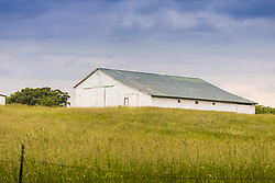 White Barn in meadow on a hill