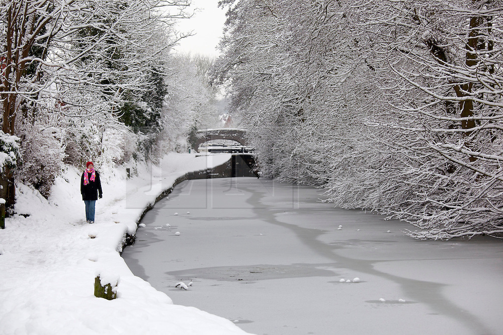 © Licensed to London News Pictures. 21/01/2013. Atherstone, North Warwickshire, UK. Snow freezing on the trees and canals around Atherstone in North Warwickshire. Snow turning to ice covers the trees along the Ashby canal. Photo credit : Dave Warren/LNP