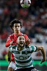 February 7, 2019 - Na - Lisbon, 06/02/2019 - SL Benfica received Sporting CP tonight at the Est√°dio da Luz stadium in the first leg of the Portuguese Cup 2018/19 semi-final. Jo√£o Félix; Nemanja Gudelj  (Credit Image: © Atlantico Press via ZUMA Wire)