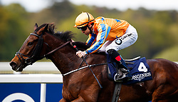 Torcedor ridden by Colm O'Donoghue comes home to win The Longines Sagaro Stakes at Ascot Races.