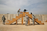 Bomb sniffing dogs in Iraq doing a drill where each dog stays on his own step.