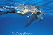 snorkeler pets a friendly wild juvenile Atlantic spotted dolphin, Stenella frontalis, Bahamas, (most wild dolphins will not permit touching and experts advise against attempting it), MR 222
