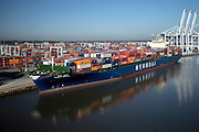 Container ships working at the Garden City Terminal n the Savannah River and Roll on roll off  ships working at the Georgia Ports Authority Colonials Island facility, Monday,  Oct. 27, 2014, in Savannah, Ga., in Savannah, Ga.  (GPA Photo/Stephen B. Morton)
