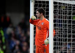 Luke Daniels of Scunthorpe United - Mandatory byline: Robbie Stephenson/JMP - 10/01/2016 - FOOTBALL - Stamford Bridge - London, England - Chelsea v Scunthrope United - FA Cup Third Round
