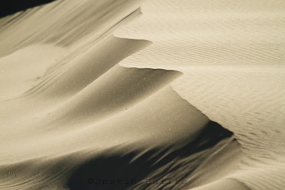 Tahkenitch Dunes, Oregon Dunes National Recreation Area near Florence, Oregon.