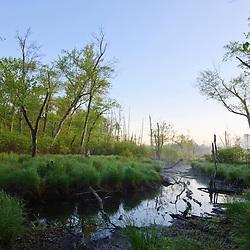 Fish Brook at Windrush Farm in North Andover, Massachusetts.