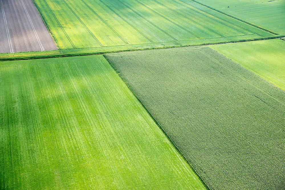 Nederland, Groningen, Onstwedde, 27-08-2013;<br /> Achteresch stukken, ten noorden van Stadskanaal [ grasland, aardappels ]<br /> Platteland met aardappelvelden en weidegrond.<br /> Countryside with agricultural land  north Netherlands, mainly potato production.<br /> luchtfoto (toeslag op standaard tarieven);<br /> aerial photo (additional fee required);<br /> copyright foto/photo Siebe Swart.