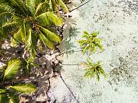 Aerial view of Motu Mirimiri , Rauto'anui, Raiatea, Leeward Islands, French Polynesia
