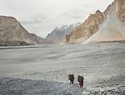 Going to get wood for cooking and heating in Khuramabad, a winter pasture two hour walk from Passu village, across the Hunza valley riverbed. Gojal region.