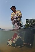 Martha Samson washes her families clothes in the busy lakeshore community of Cape Maclear, Lake Malawi, Malawi.