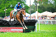24  March, 2012:  HOLD YOUR COURSE and Darren Nagle clear the last to win the G H Bostwick at Aiken.