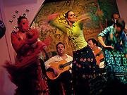 Flamenco dancers at the legendary flamenco club, Los Gallos, in Seville, Spain.
