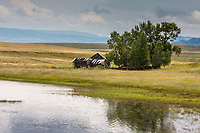 Old ranch buildings along the shore of Porter Lake.  Wyoming