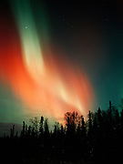 Brilliant red, yellow and green aurora during geomagnetic storm on the night of October 27-28, Upper Susitna Valley, Alaska.